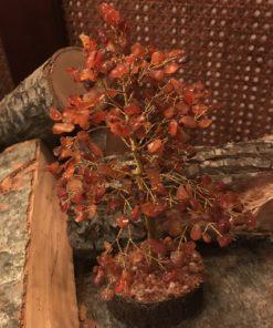 Δέντρο καρνεόλης