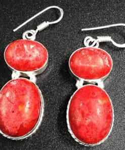σκουλαρίκια κόκκινου όνυχα για πλούτο